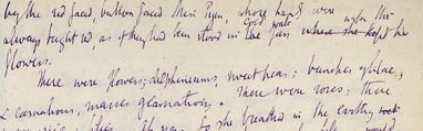 Virginia Woolf - calligrafia